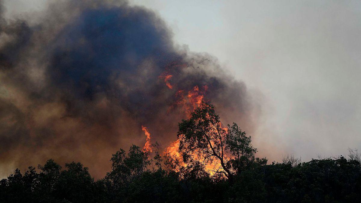 Declaran alerta roja en Quilpué por incendio forestal
