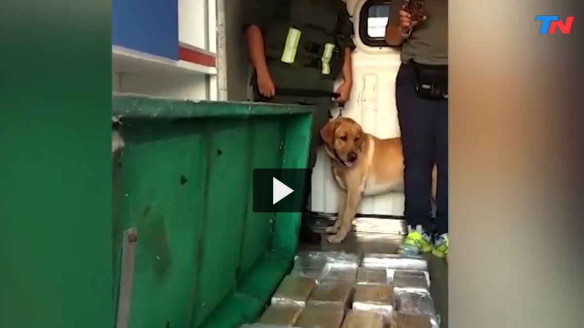 [VIDEO] La ambulancia narco que llevaba 400 kilos de marihuana en Argentina