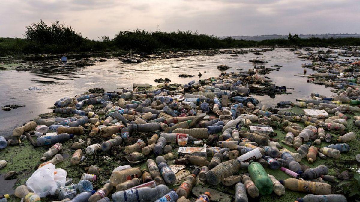 La prometedora enzima creada sin querer que puede ayudar a combatir la crisis del plástico