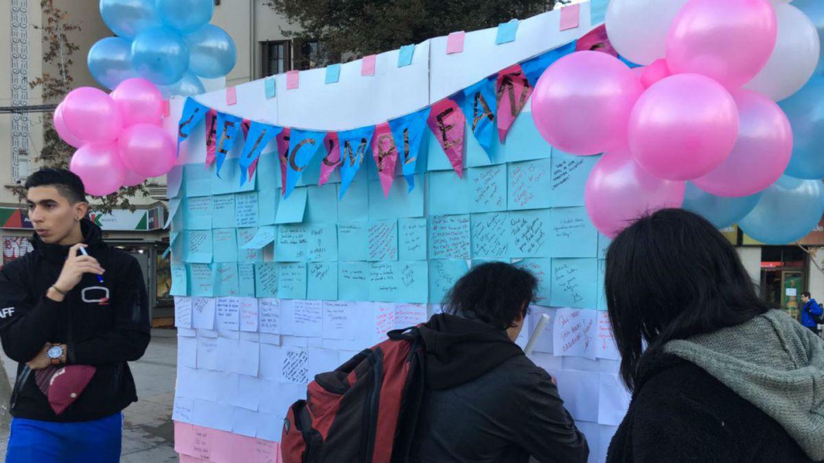 Iguales presiona a la Comisión Mixta para apurar aprobación de Identidad de Género