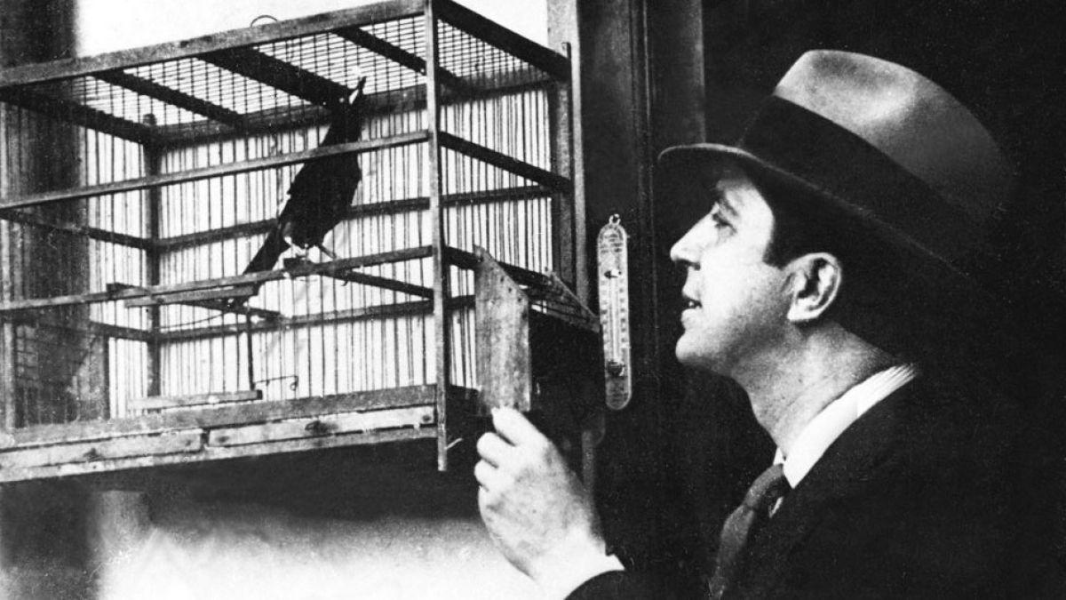 Científico cuestiona teoría oficial sobre el accidente aéreo que acabó con la vida de Carlos Gardel