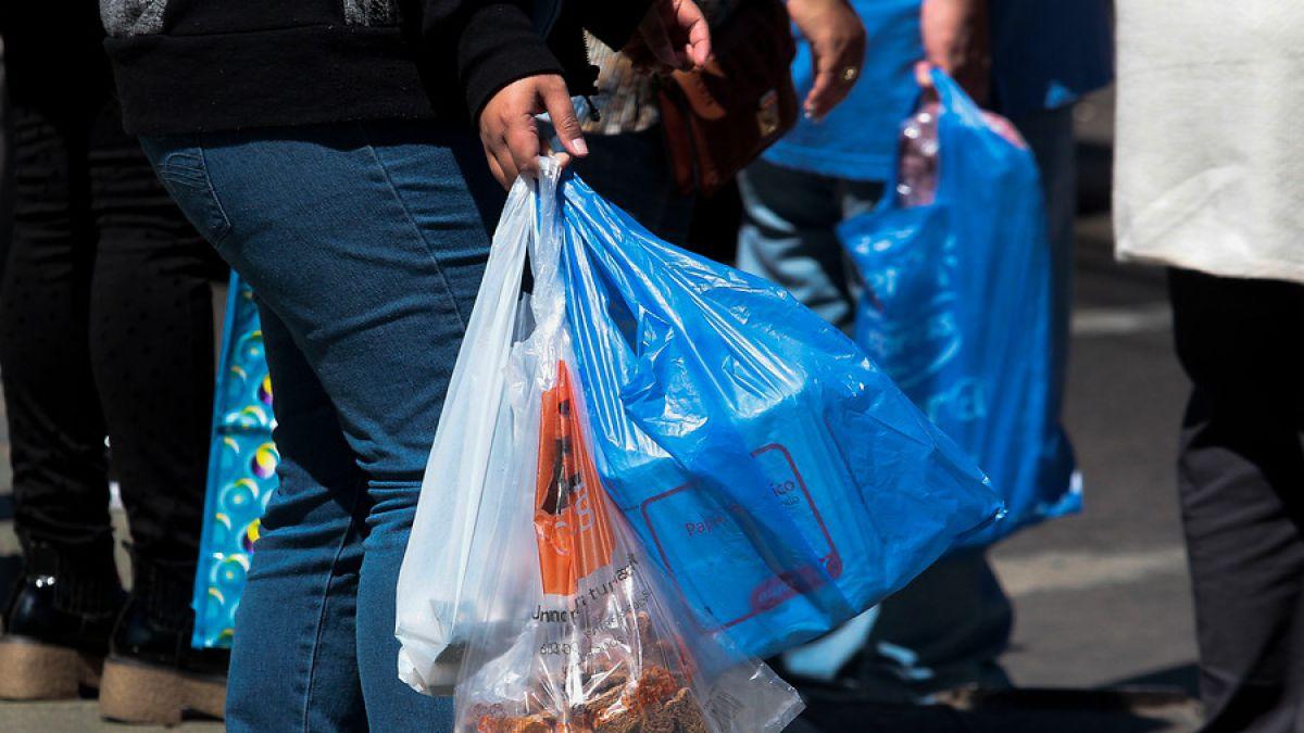 Bolsas plásticas no van más: Congreso despachó proyecto a ley