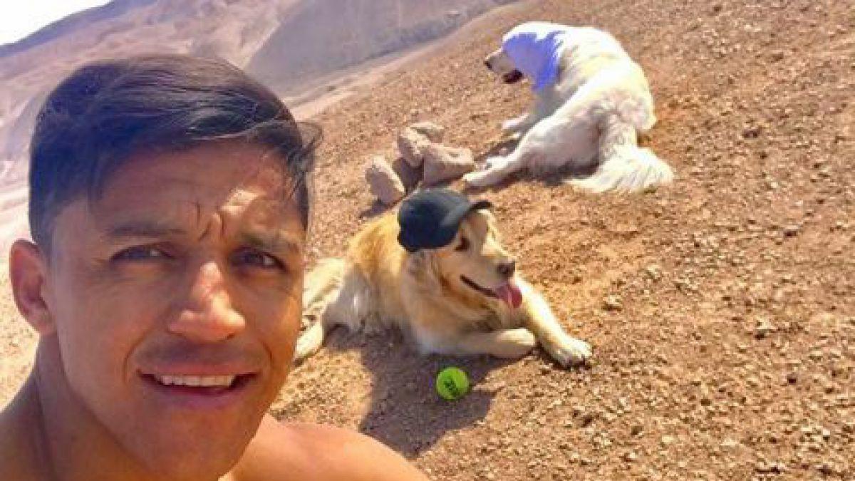 [FOTOS] En el desierto y junto a sus perros: así es el entrenamiento de Alexis Sánchez