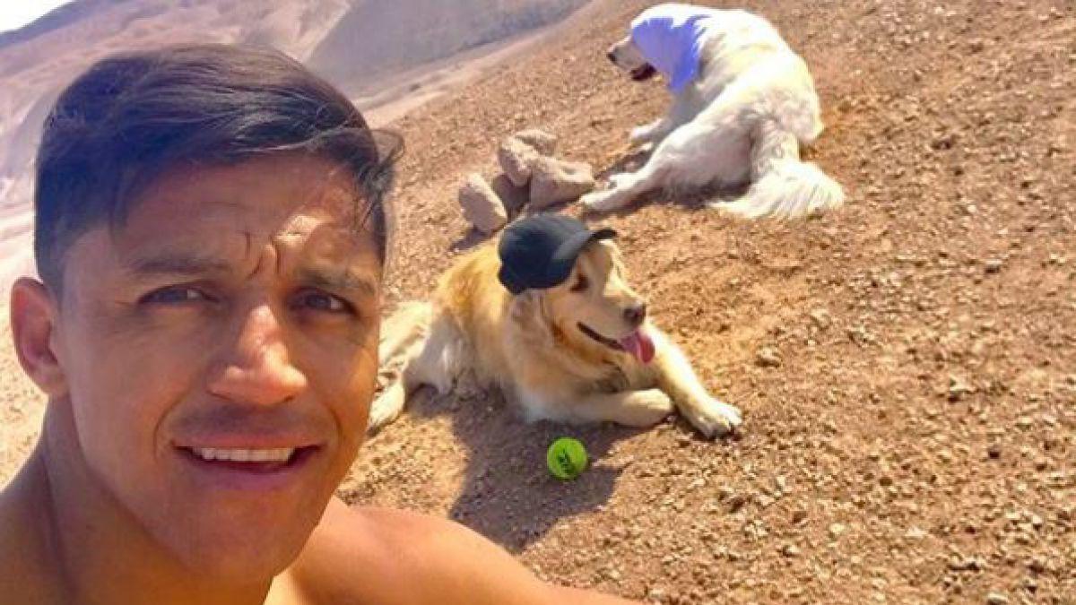 """[VIDEO] El momento más """"romántico"""" de Alexis Sánchez junto a sus perros"""