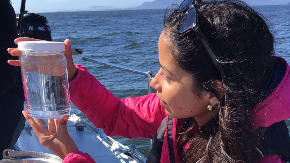 La bióloga que viajó a través de aguas llenas de plástico en el Pacífico y regresó consternada