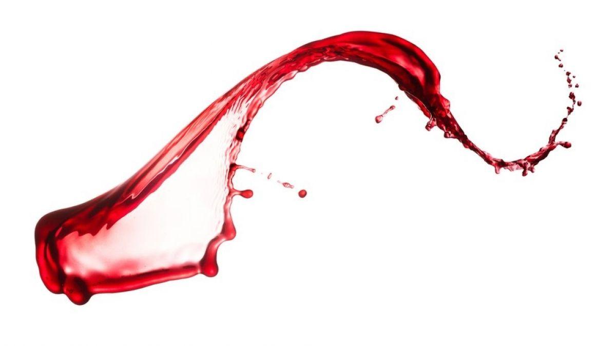 Las semejanzas y diferencias entre los negocios de vino de California, Chile y Argentina