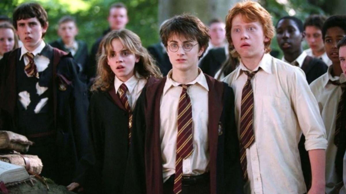 Daniel Radcliffe recibió apoyo de ex compañero de elenco en Harry Potter