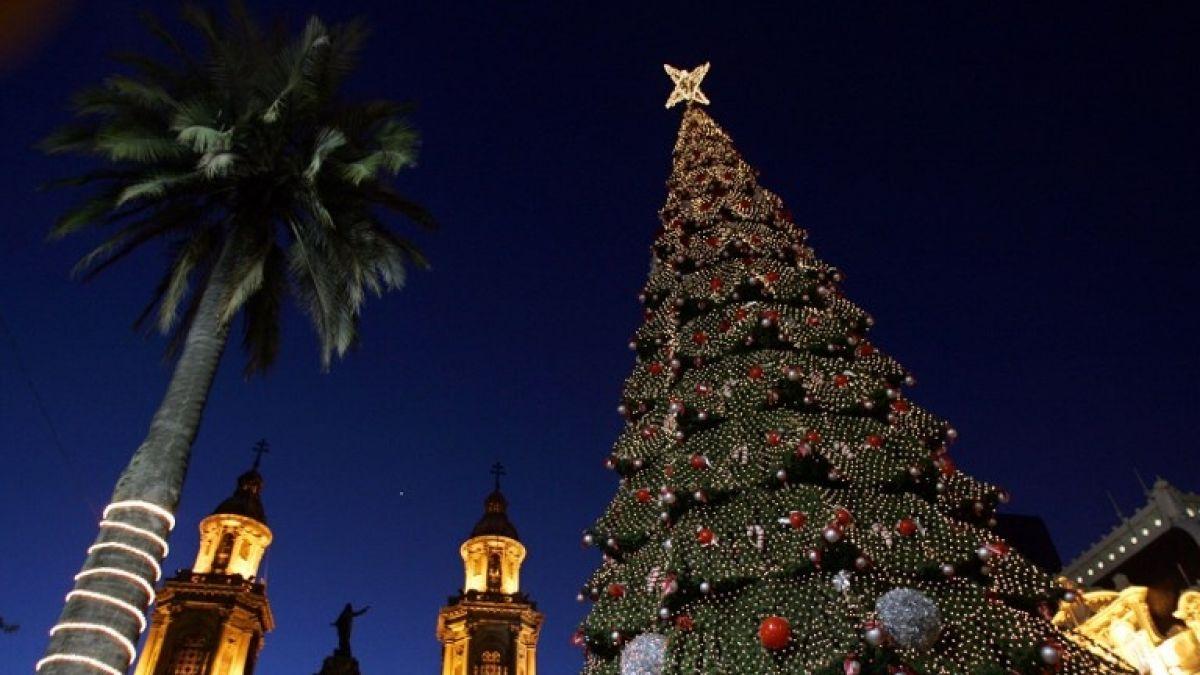 [VIDEO] Cómo y cuándo se debe armar el árbol de Navidad