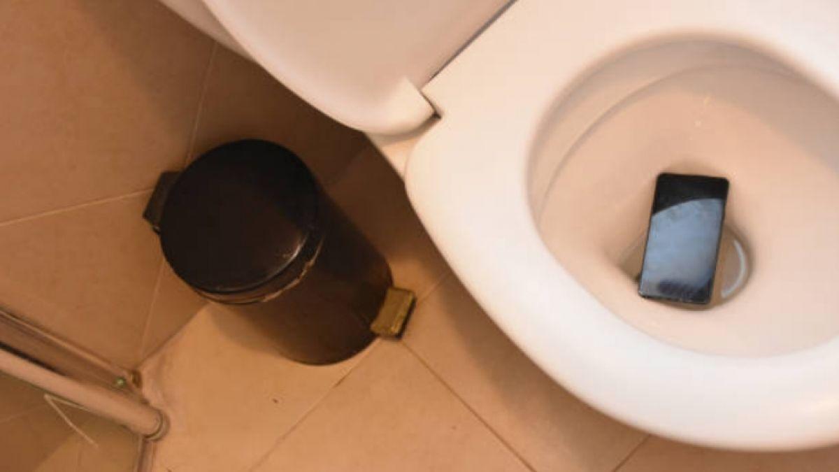 Estudio revela que celulares poseen casi siete veces más bacterias que un inodoro