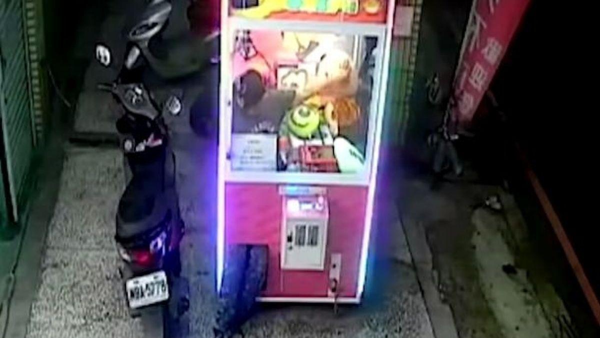Contorsionista hábil entra a una máquina de peluche y los roba