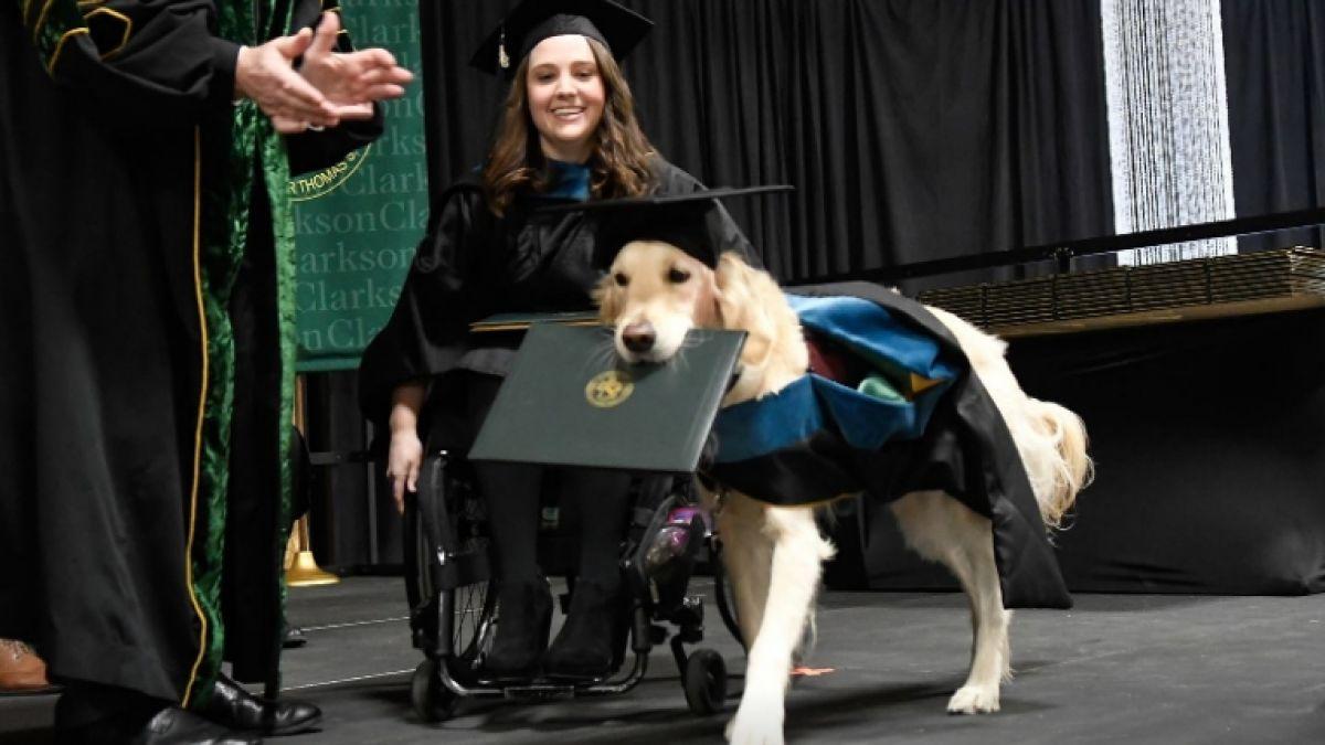 Perro se gradúa junto a su humana de una universidad en Nueva York