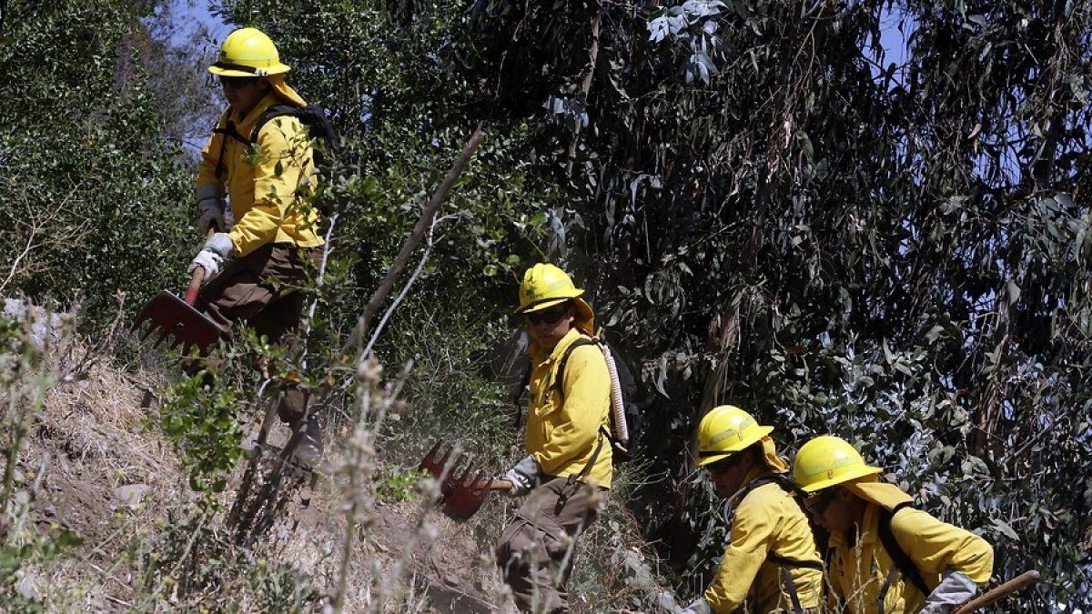 Conaf combate 13 incendios forestales a lo largo del país