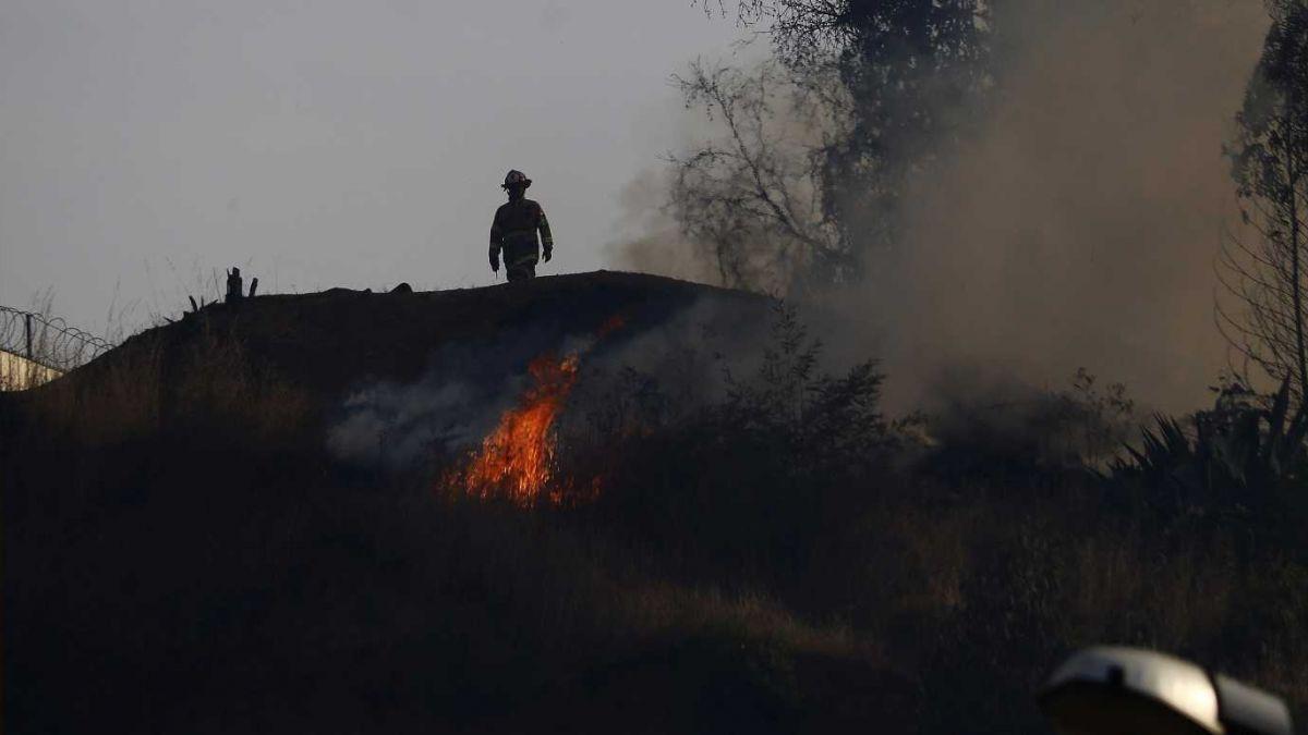 Incendios Forestales arrasarían 70 mil hectáreas