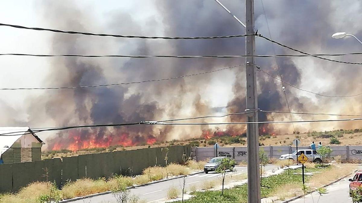 Incendio forestal amenaza a viviendas en Puente Alto
