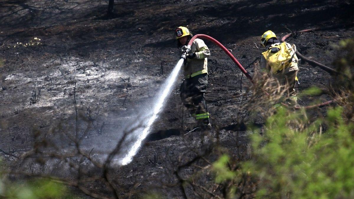 45 incendios forestales permanecen activos: Hay 74 damnificados en La Araucanía