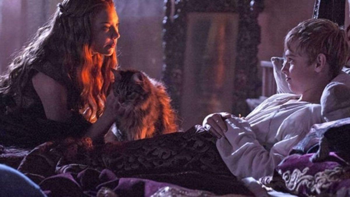"""Triste noticia para los fans de """"Game of Thrones"""": creadores revelan que """"Ser Pounce"""" está muerto"""