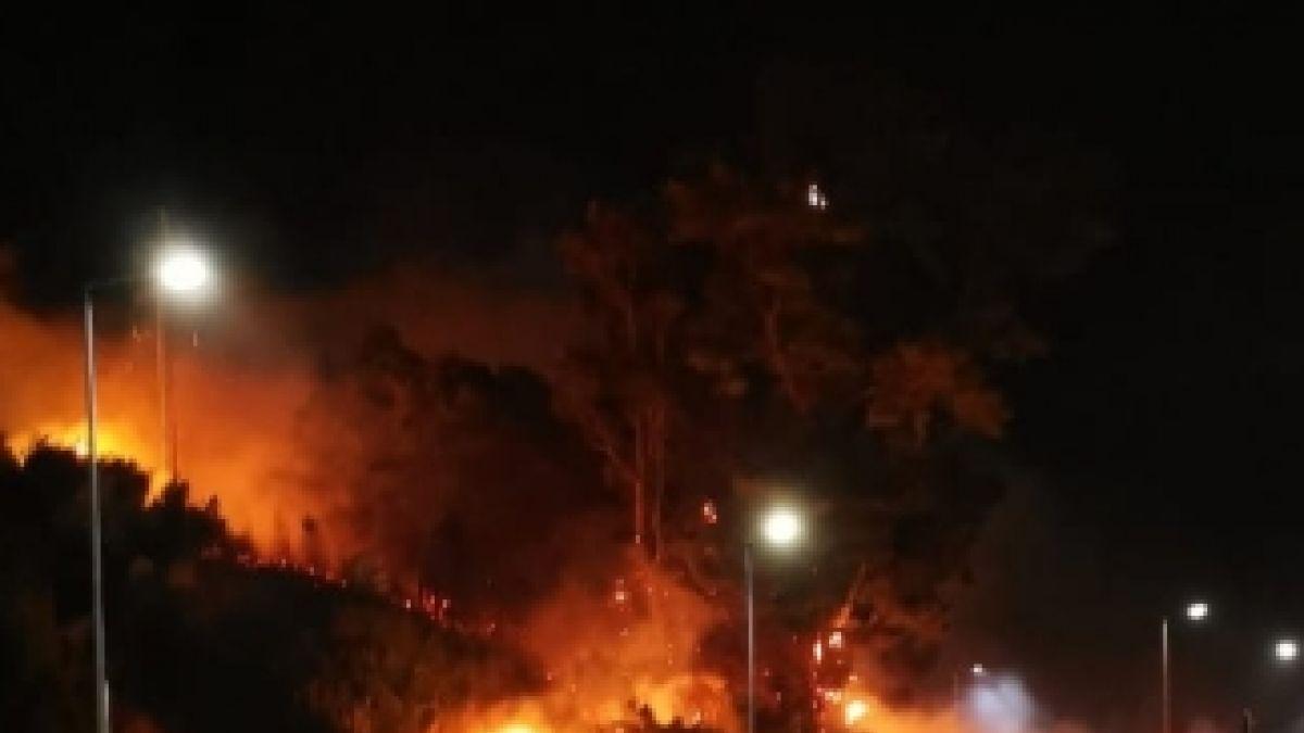 [VIDEO] Incendios forestales amenazan zonas residenciales en sectores de la región del Biobío