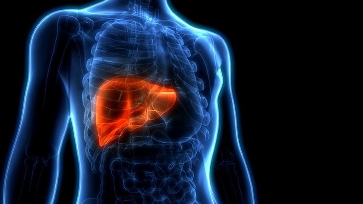 5 de los alimentos más saludables para tu hígado