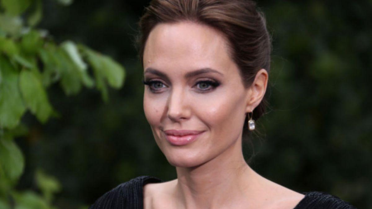 Angelina Jolie dona 50 mil dólares para ayudar a Bosnia y Serbia