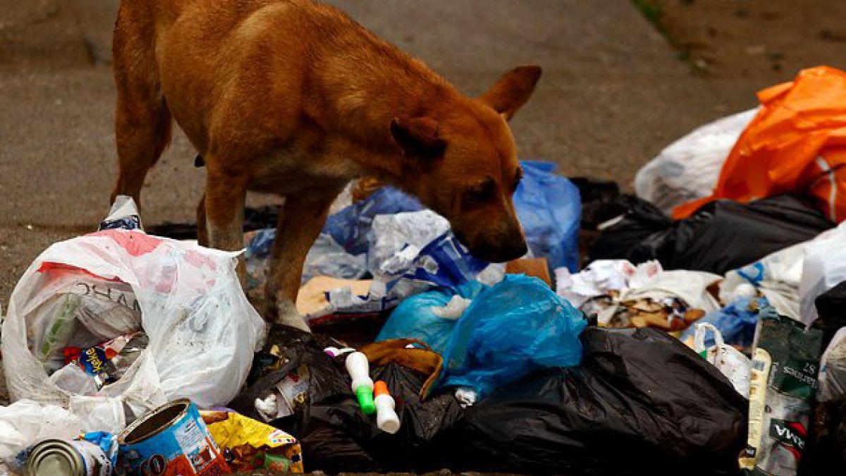 Paro de recolectores: Disponen tres rellenos sanitarios para basura