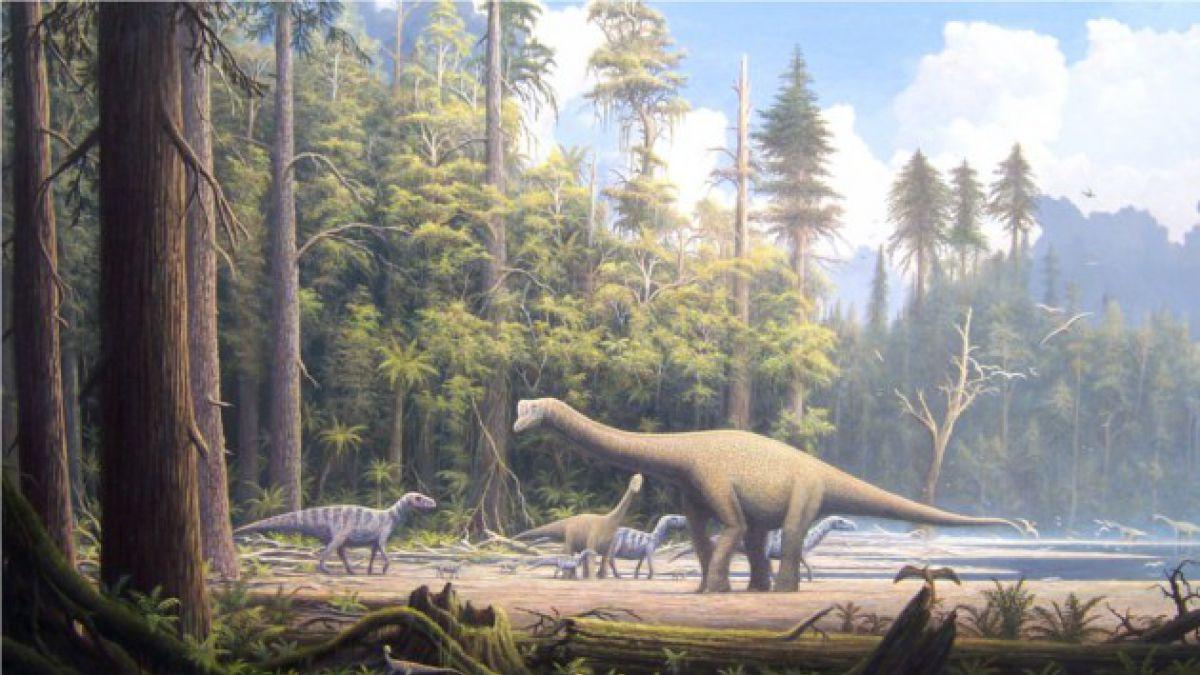 Estudio descubre que los dinosaurios tenían plumas coloridas antes de aprender a volar