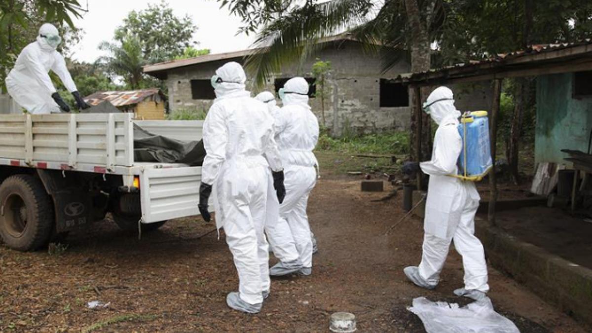 Nuevo descubrimiento sobre el ébola podría permitir el desarrollo de tratamientos