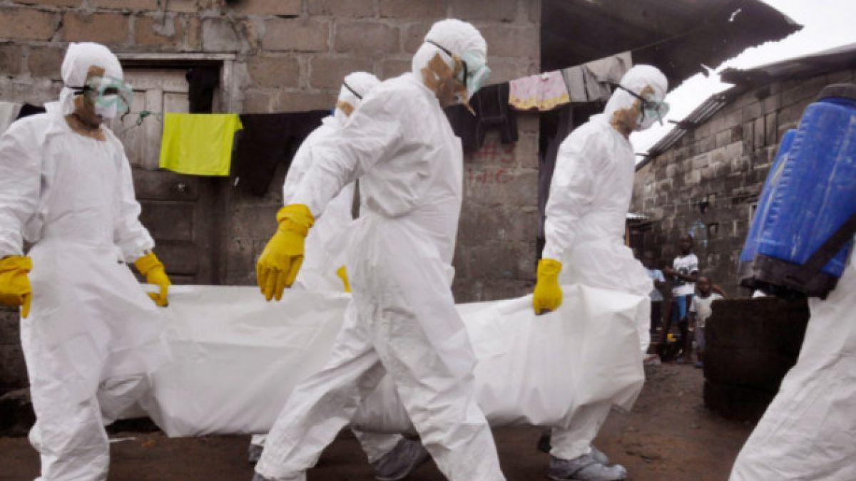 OMS: El ébola ya ha provocado la muerte de 2.400 personas