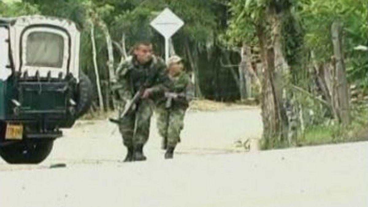 FARC anuncia cese al fuego por dos meses