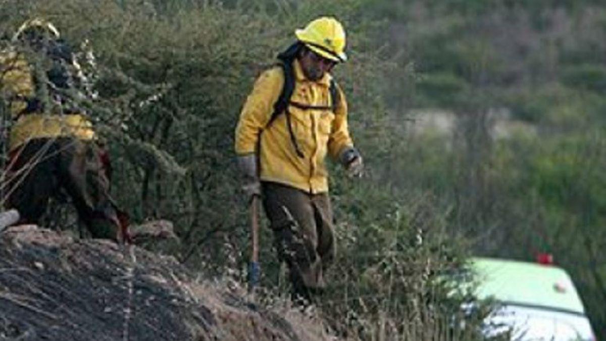Incendio forestal en Las Cabras ya ha consumido al menos 300 hectáreas