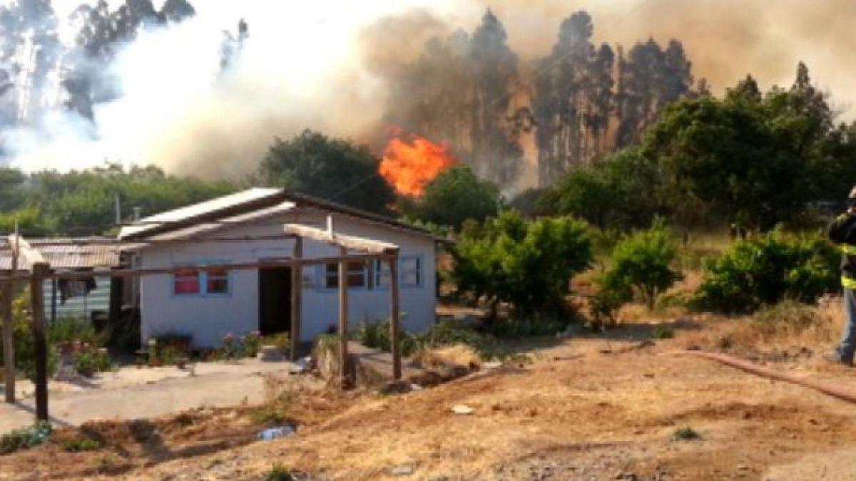 Incendio forestal provoca evacuación en Melipilla