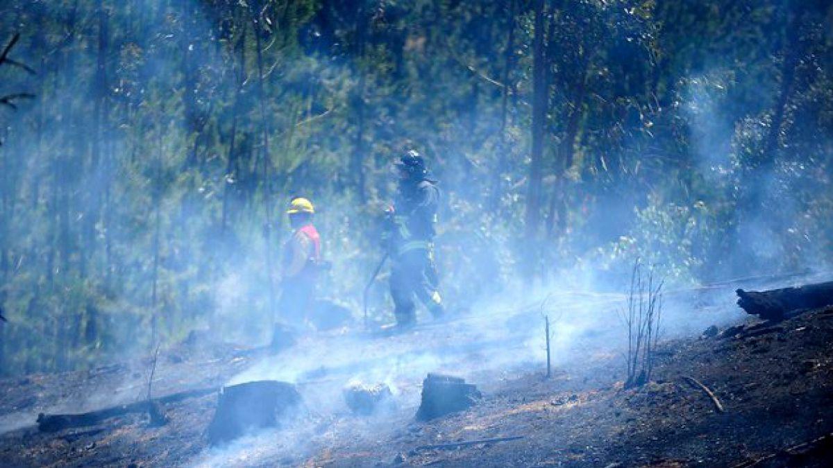 Incendio forestal provoca cierre de una pista en la Ruta 68