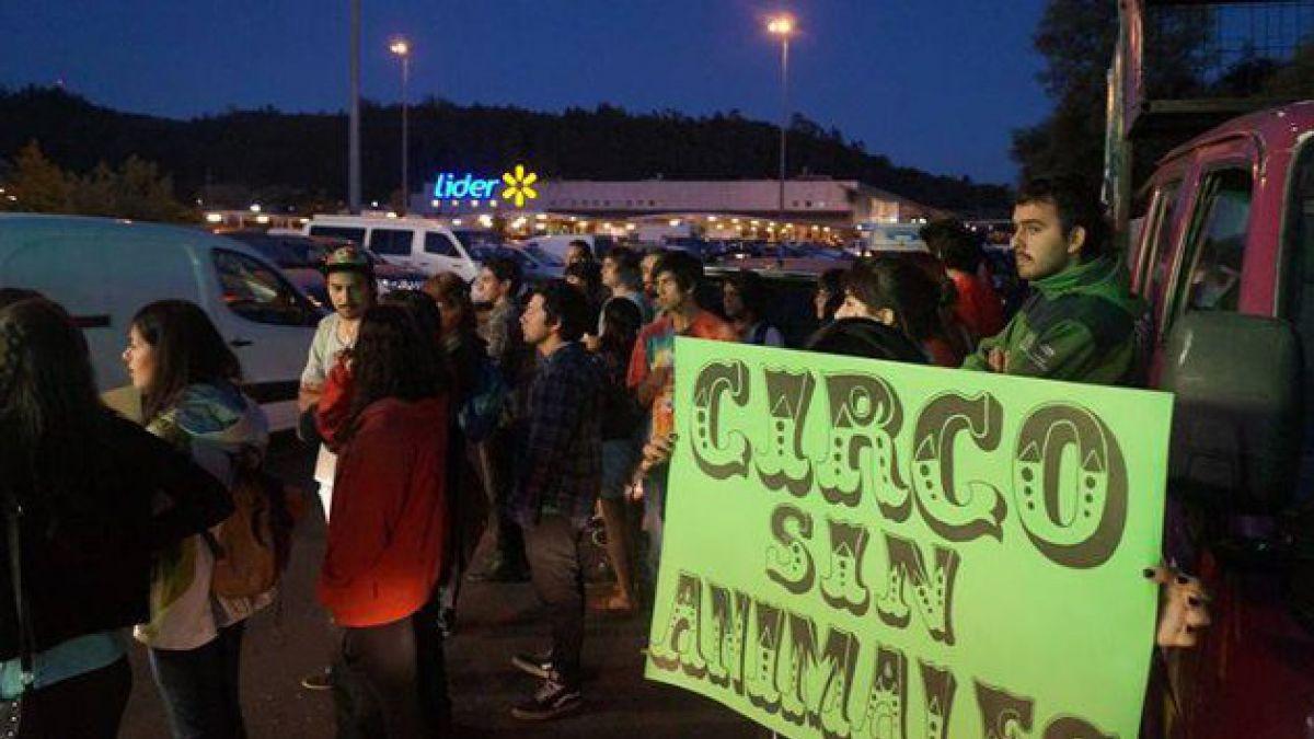 Acusan de injuriosos y agresivos al circo Los Tachuelas