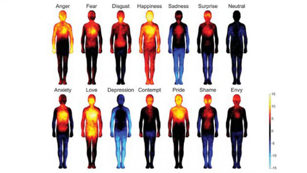 Estudio revela cómo reacciona el cuerpo humano ante las emociones