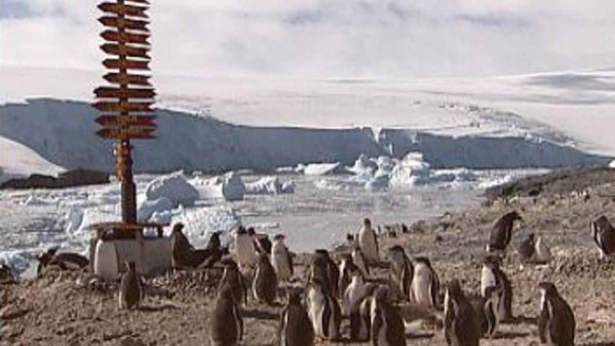 Denominan Tierra de la Reina Isabel a territorio en la Antártica