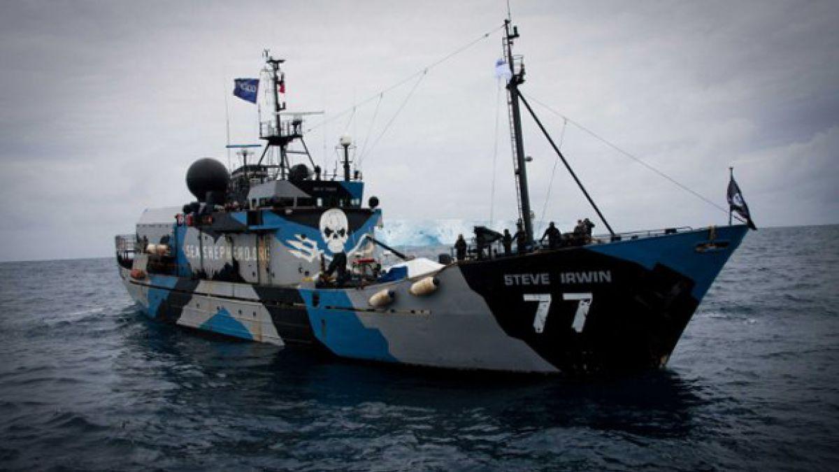 Sea Shepherd finaliza décima campaña con 350 ballenas rescatadas