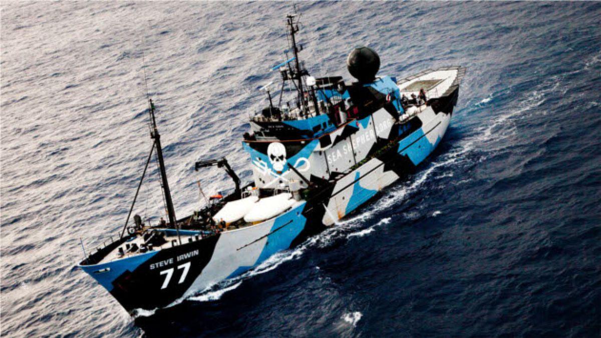 Sea Shepherd: El fin de su campaña más agresiva