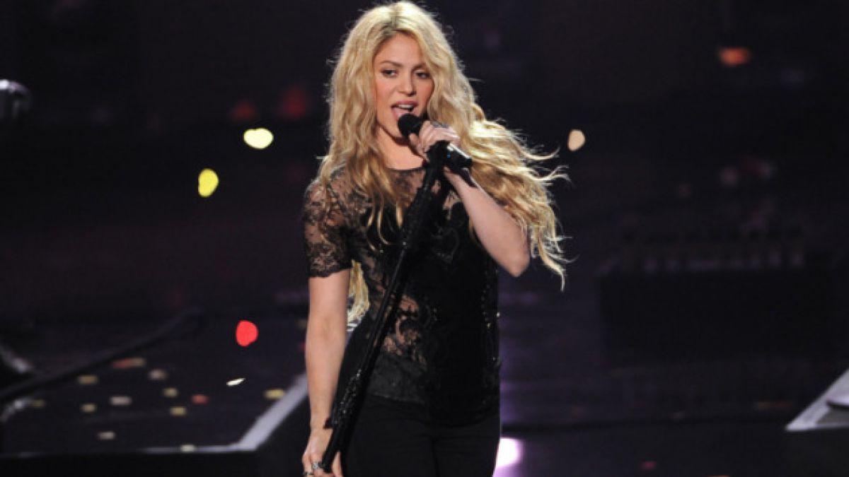 Nombran Shakira a nueva especie de avispa por sus movimientos