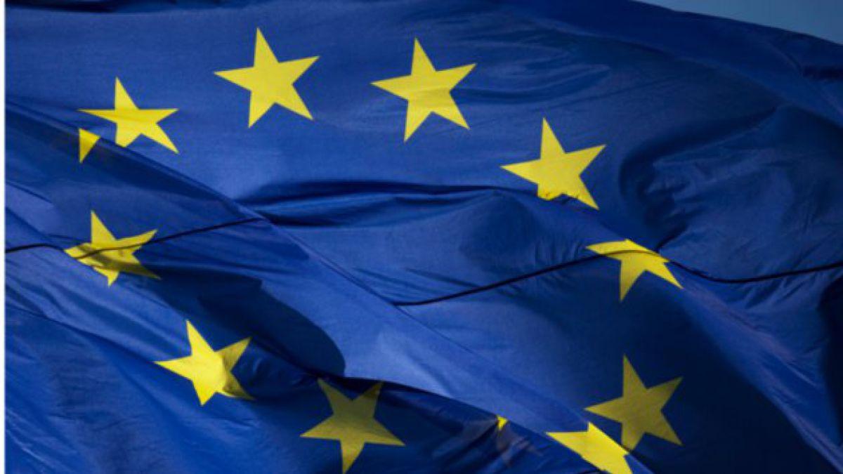UE espera que Bolivia difunda informe sobre consumo legal de coca