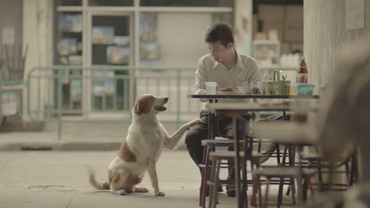 VIDEO: El comercial tailandés que emociona al mundo