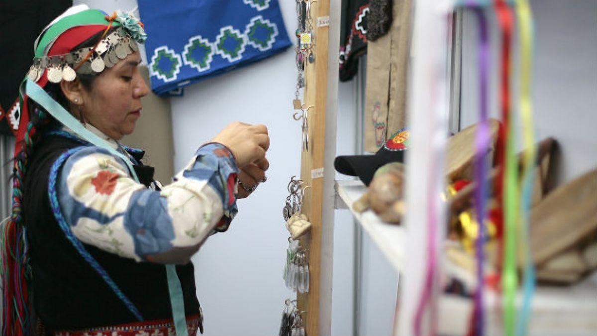 Estudio Injuv: 66% de jóvenes chilenos cree que Estado no respeta derechos de pueblos originarios