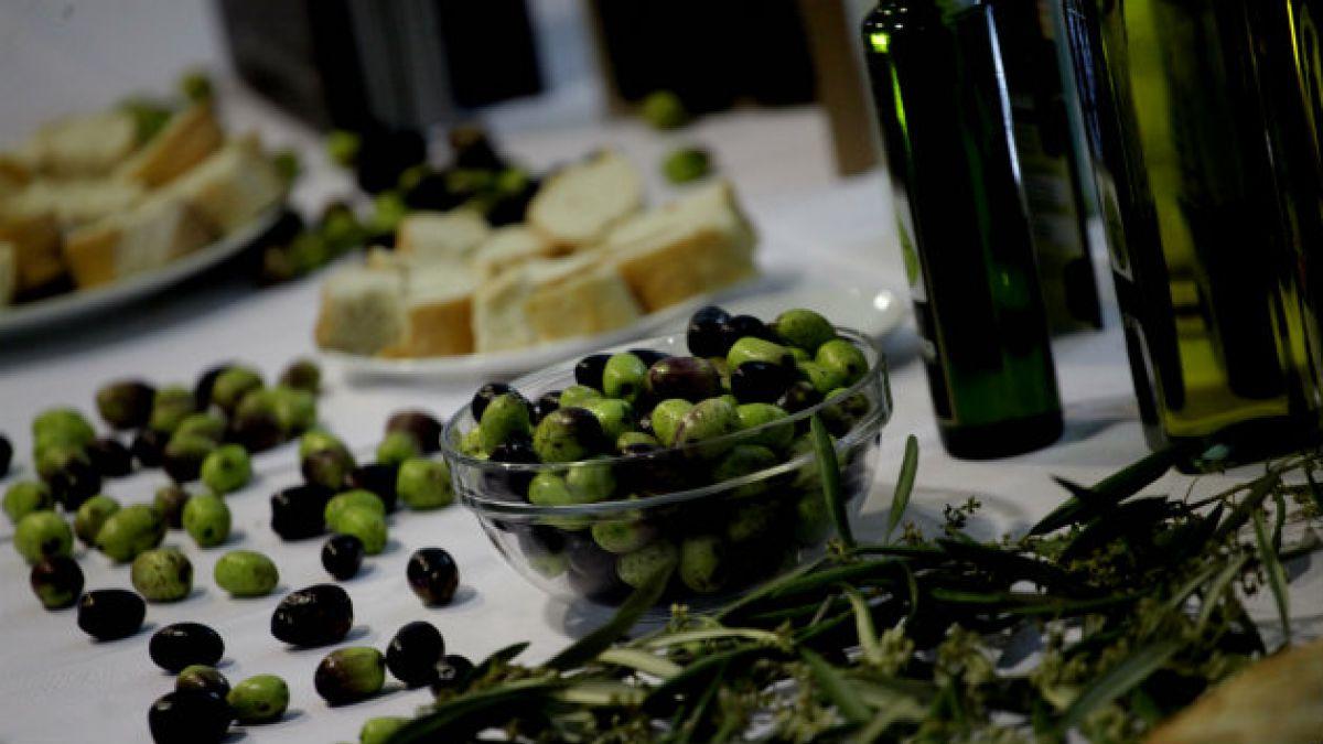 Sequía y plagas arruinan producción de aceite de oliva en Europa