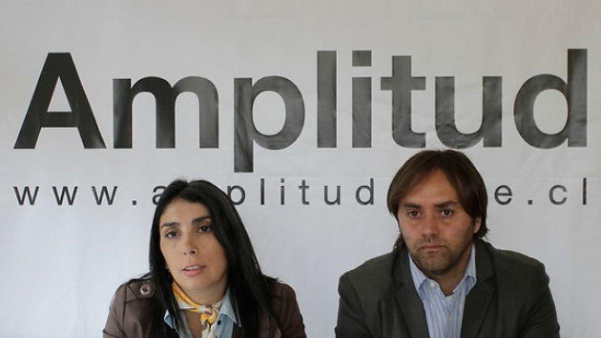 Amplitud: movimiento nació para representar a gente que no se sentía interpretada por RN y la UDI