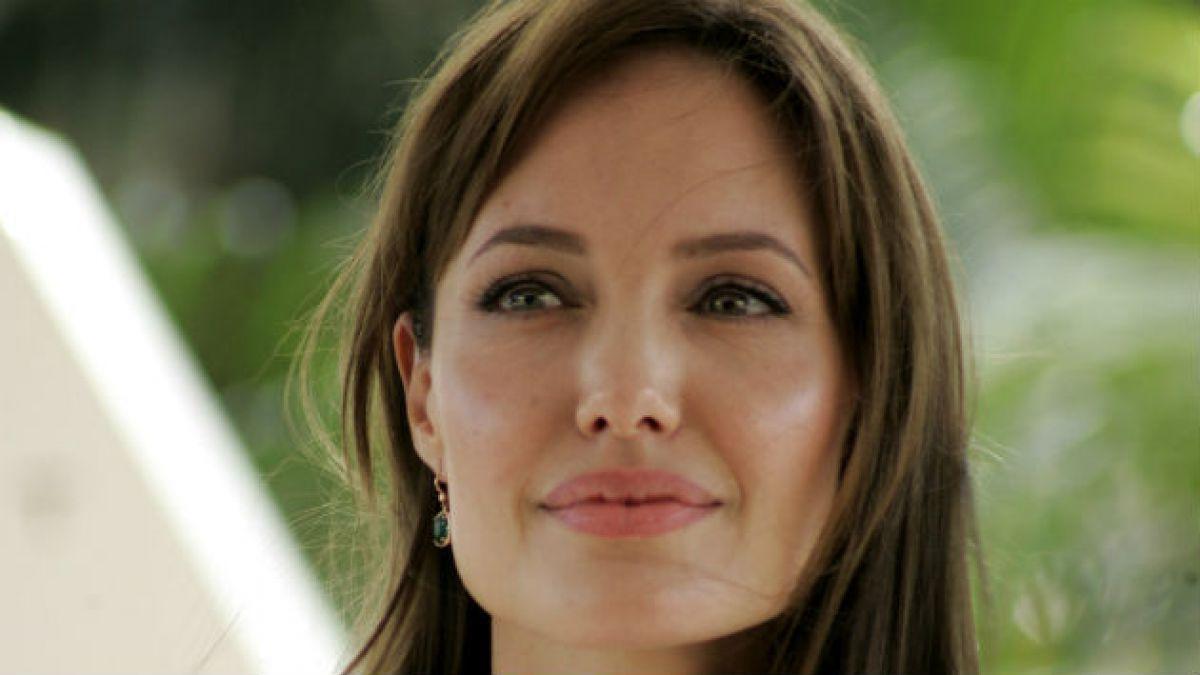 Angelina Jolie dirigirá África una película sobre la caza furtiva de elefantes