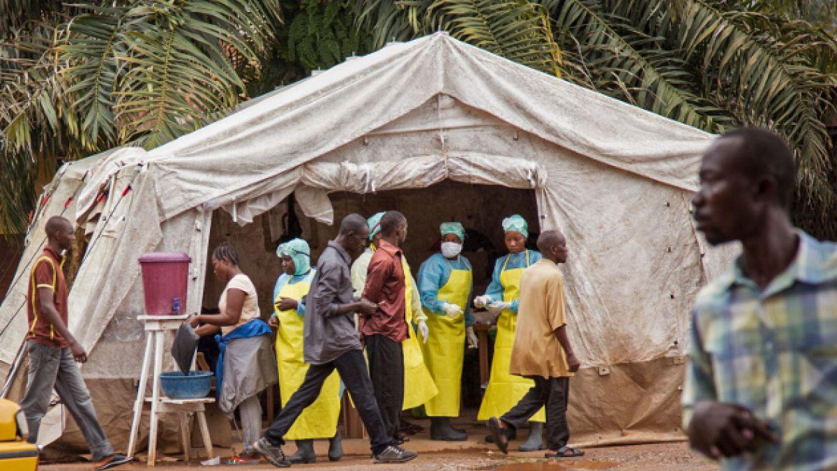 Programa computacional advirtió del ébola nueve días antes que la OMS anunciara el primer caso