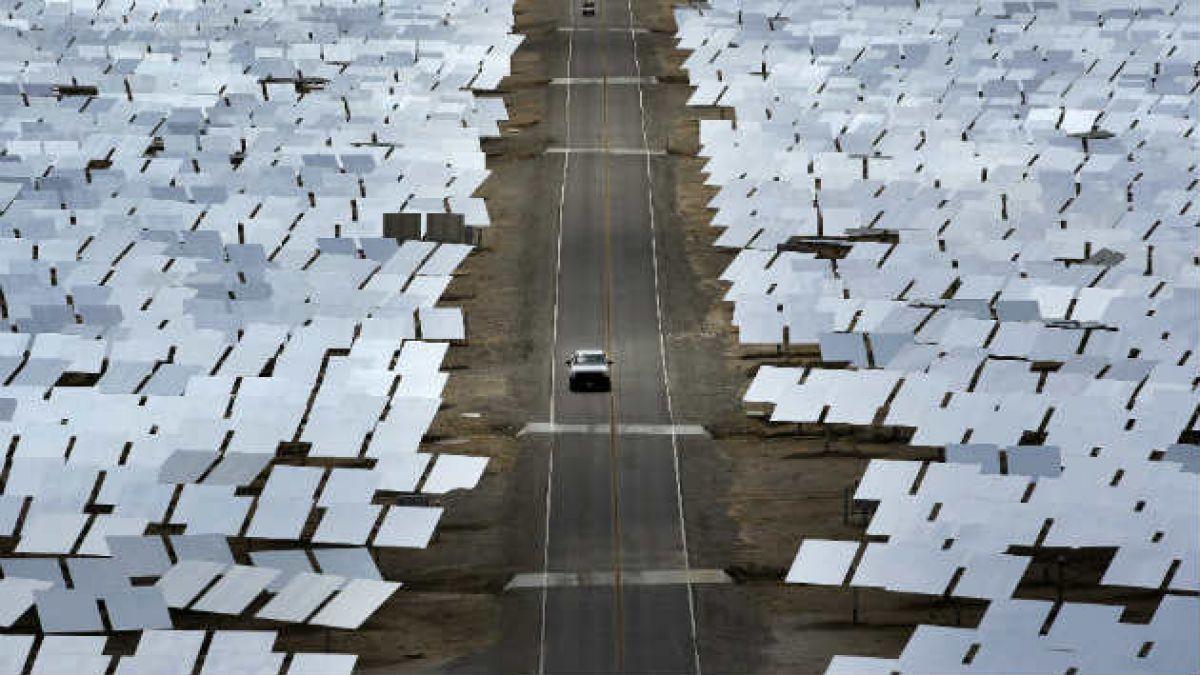 28 mil aves son incineradas en pleno vuelo por planta solar en EE.UU.