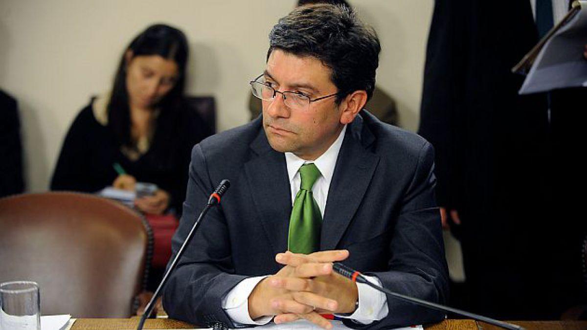 Ministro de Medio Ambiente: Comité no dilatará plazos, tenga o no presiones políticas