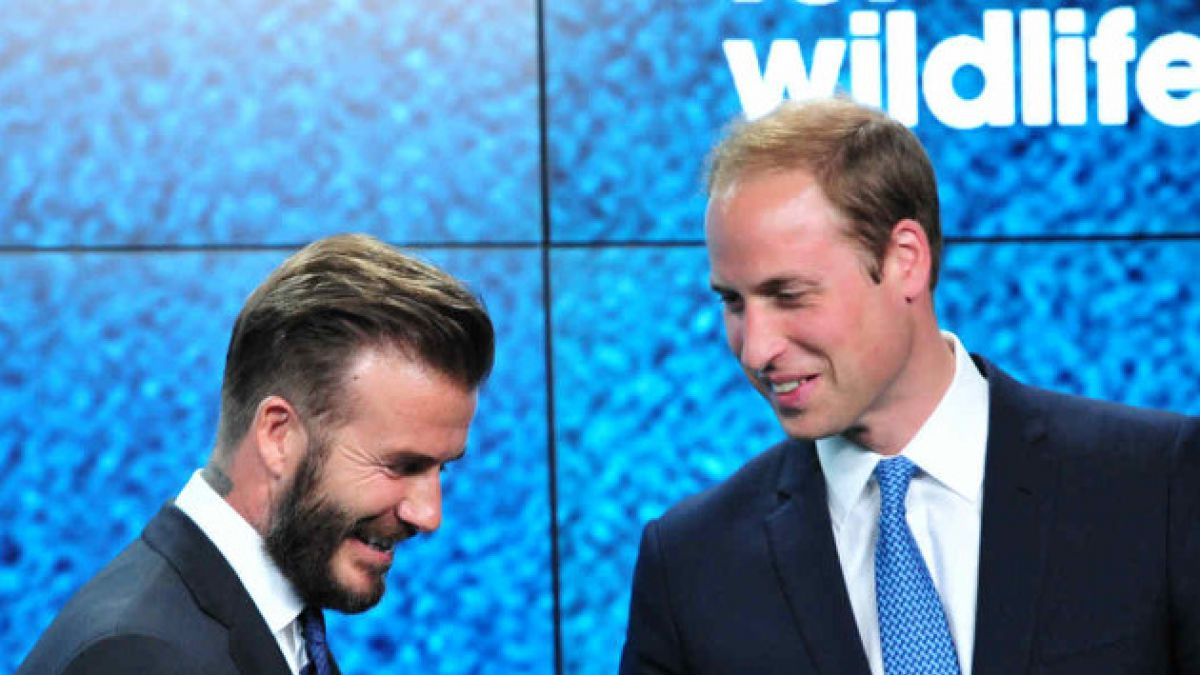 David Beckham y el príncipe William se unen para salvar elefantes y rinocerontes