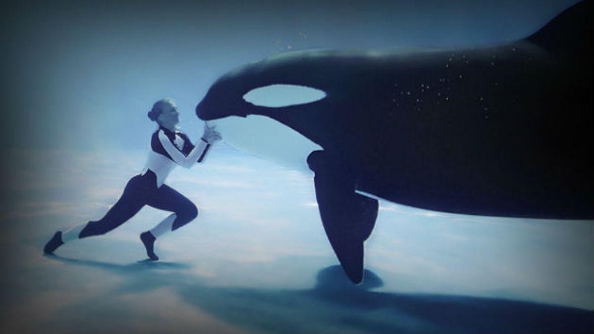 Cinco razones para ver BlackFish