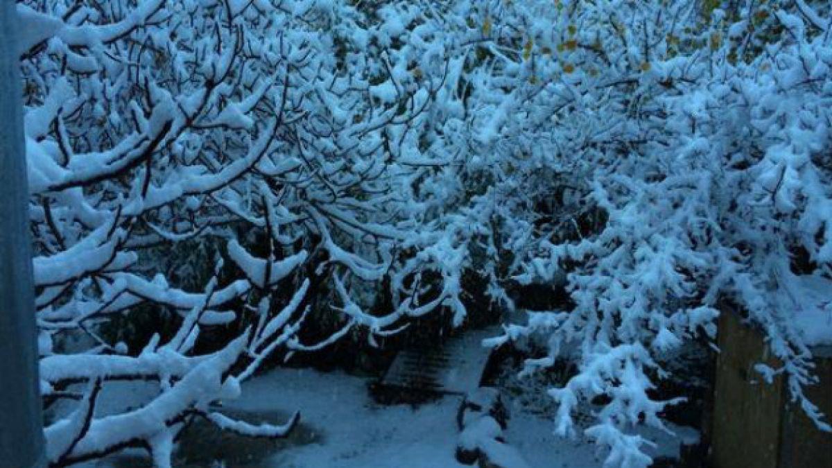 Nieve en el Valle del Elqui sorprende a sus habitantes