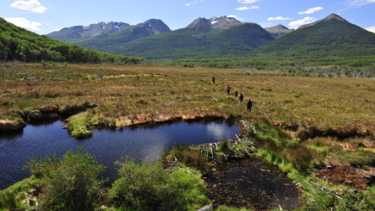 Campamento científico llevará a 40 escolares a la patagonia